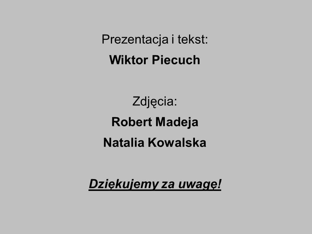 Prezentacja i tekst: Wiktor Piecuch Zdjęcia: Robert Madeja Natalia Kowalska Dziękujemy za uwagę!