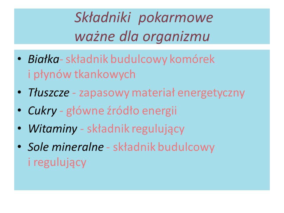 Składniki pokarmowe ważne dla organizmu Białka- składnik budulcowy komórek i płynów tkankowych Tłuszcze - zapasowy materiał energetyczny Cukry - główn