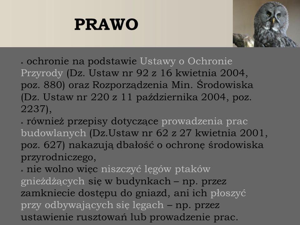 PRAWO  ochronie na podstawie Ustawy o Ochronie Przyrody (Dz. Ustaw nr 92 z 16 kwietnia 2004, poz. 880) oraz Rozporządzenia Min. Środowiska (Dz. Ustaw