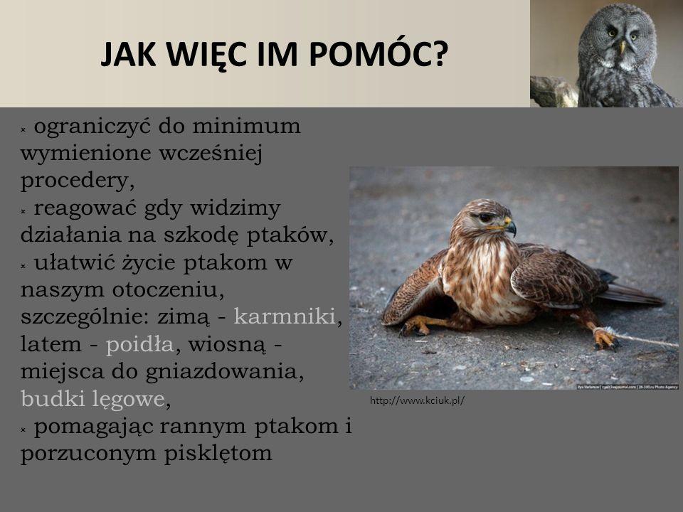 lawka.pl + / – ŻYCIA W MIEŚCIE http://wordbirds.tumblr.com alertme.com