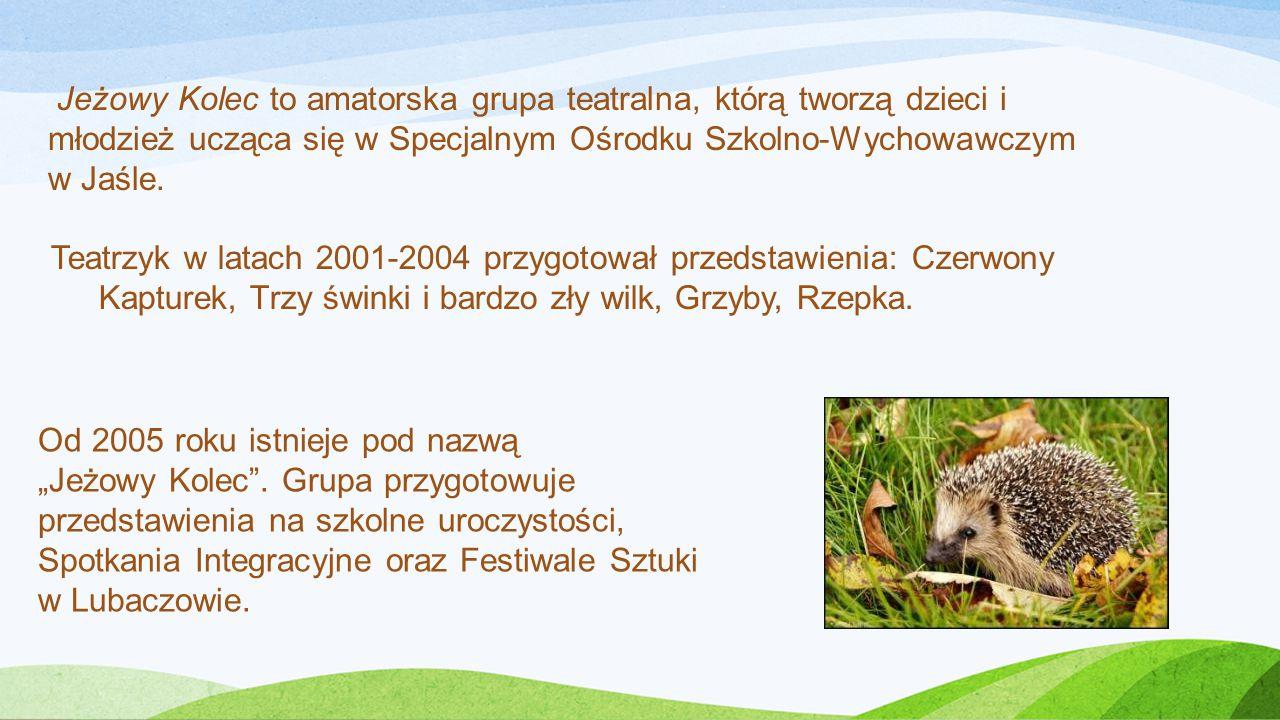 Teatrzyk w latach 2001-2004 przygotował przedstawienia: Czerwony Kapturek, Trzy świnki i bardzo zły wilk, Grzyby, Rzepka.