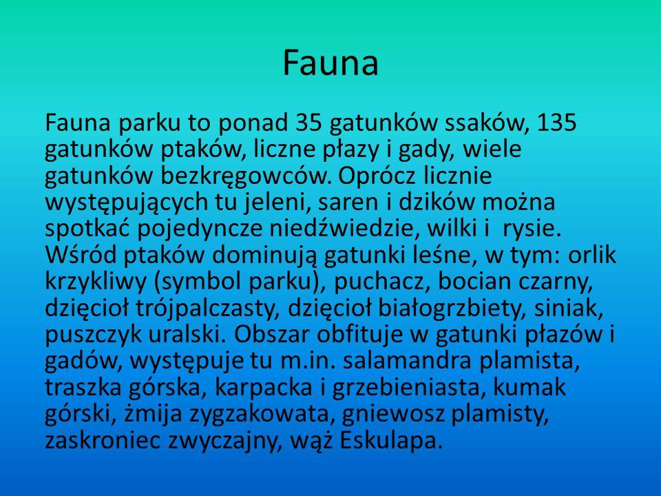 Fauna Fauna parku to ponad 35 gatunków ssaków, 135 gatunków ptaków, liczne płazy i gady, wiele gatunków bezkręgowców. Oprócz licznie występujących tu