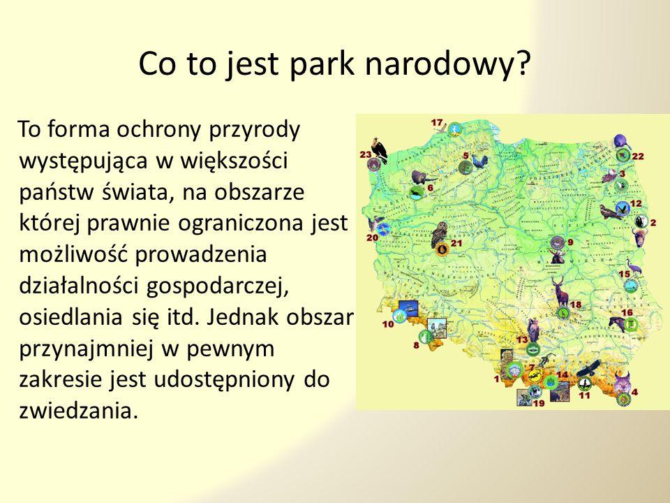 Po co tworzy się parki narodowe.