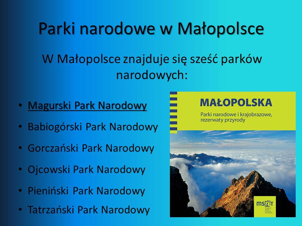 Parki narodowe w Małopolsce Magurski Park Narodowy Magurski Park Narodowy W Małopolsce znajduje się sześć parków narodowych: Babiogórski Park Narodowy