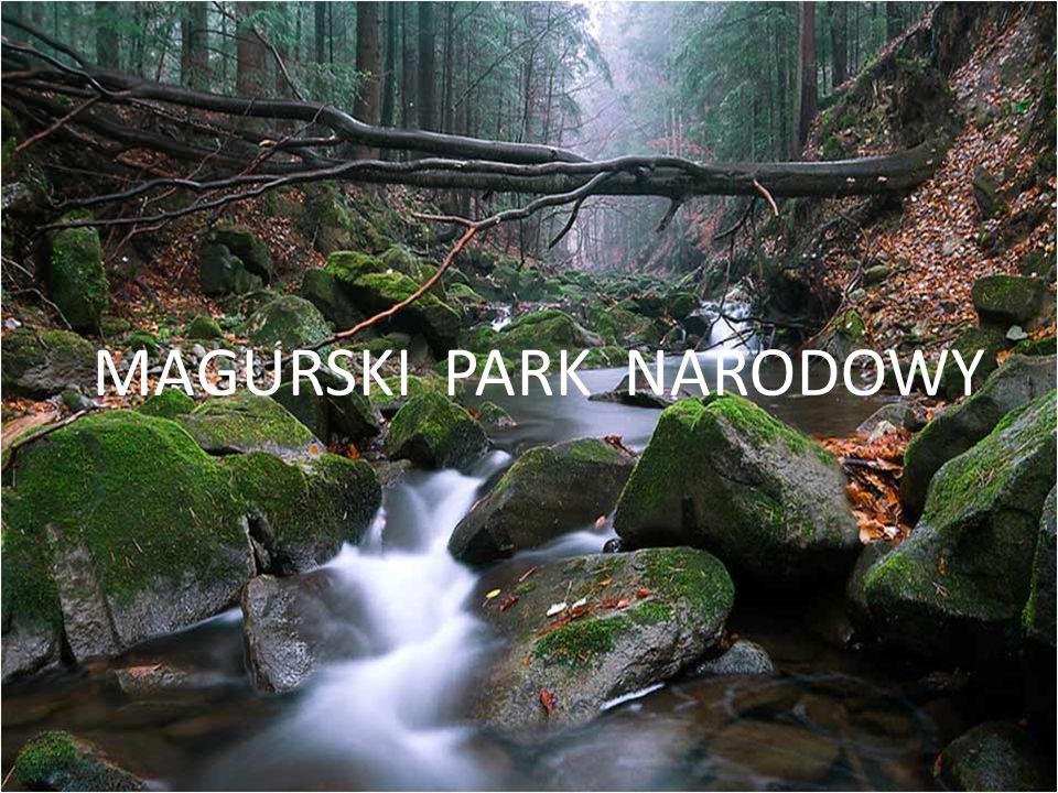 Magurski Park Narodowy utworzony został rozporządzeniem Rady Ministrów z dnia 24 listopada 1994.