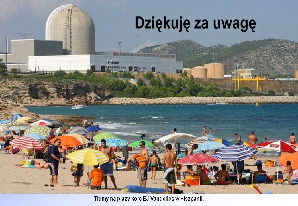 Tłumy na plaży koło EJ Vandellos w Hiszpanii, Dziękuję za uwagę