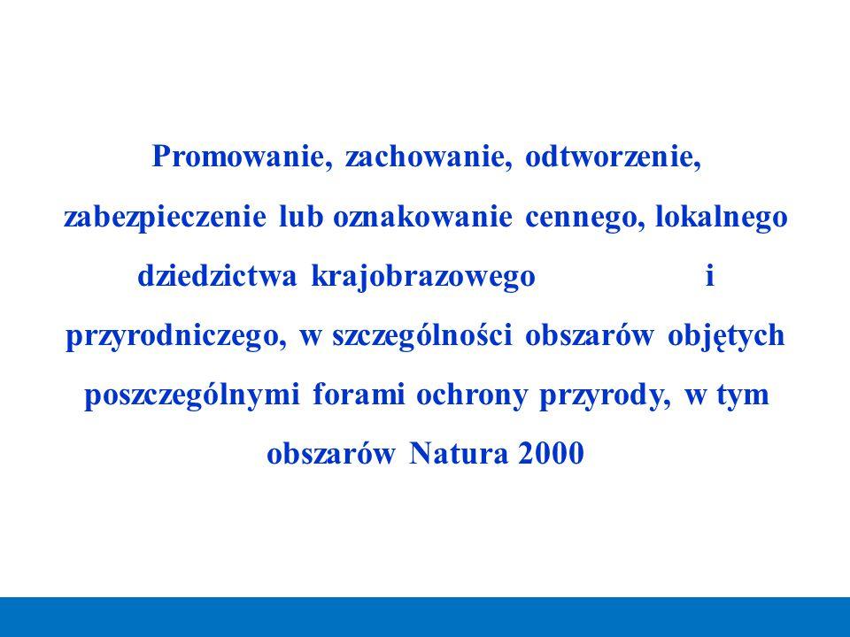 Promowanie, zachowanie, odtworzenie, zabezpieczenie lub oznakowanie cennego, lokalnego dziedzictwa krajobrazowego i przyrodniczego, w szczególności ob