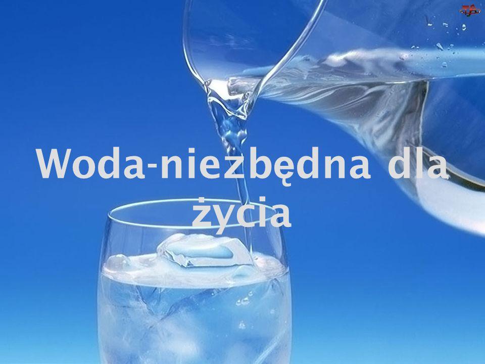 Woda-niezb ę dna dla ż ycia