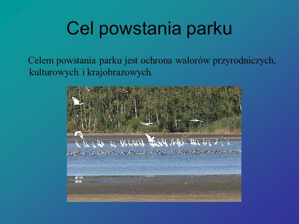 Cel powstania parku Celem powstania parku jest ochrona walorów przyrodniczych, kulturowych i krajobrazowych.