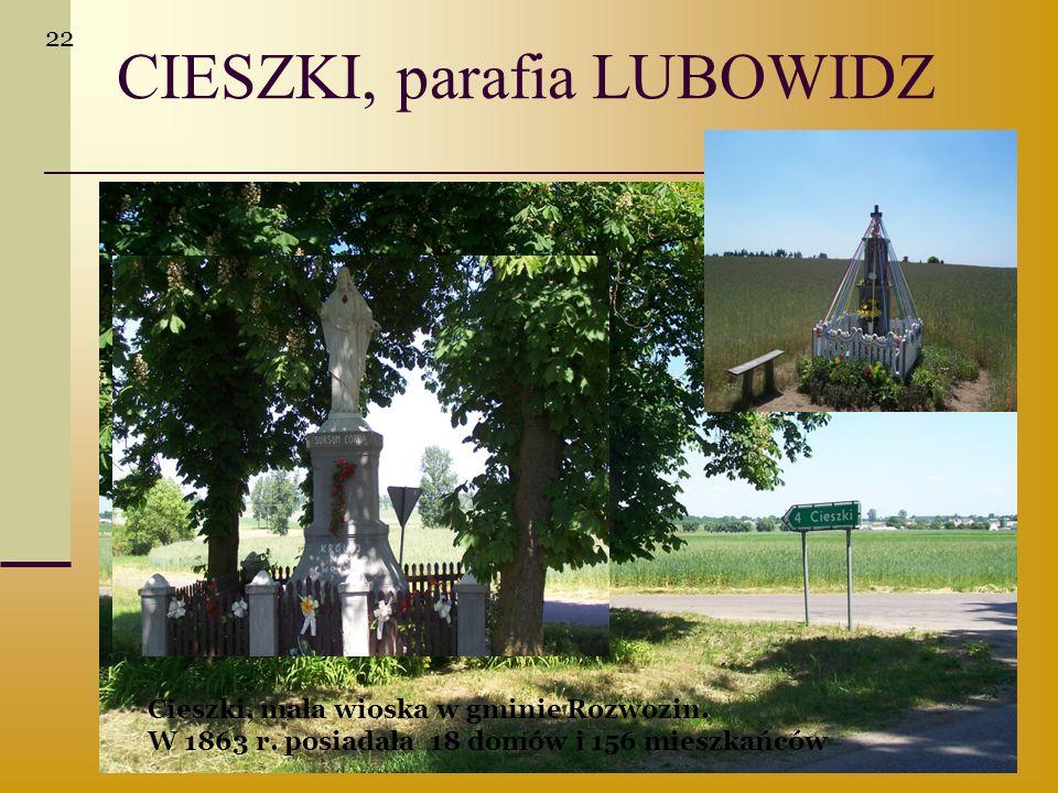 CIESZKI, parafia LUBOWIDZ Cieszki, mała wioska w gminie Rozwozin. W 1863 r. posiadała 18 domów i 156 mieszkańców 22