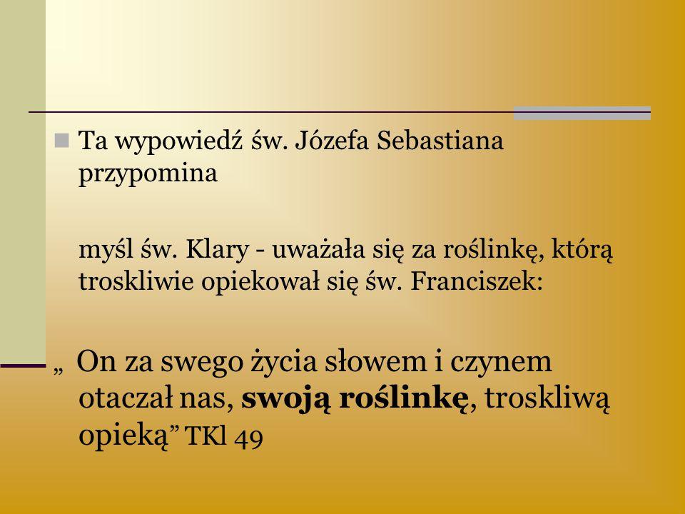 """Ta wypowiedź św. Józefa Sebastiana przypomina myśl św. Klary - uważała się za roślinkę, którą troskliwie opiekował się św. Franciszek: """" On za swego ż"""