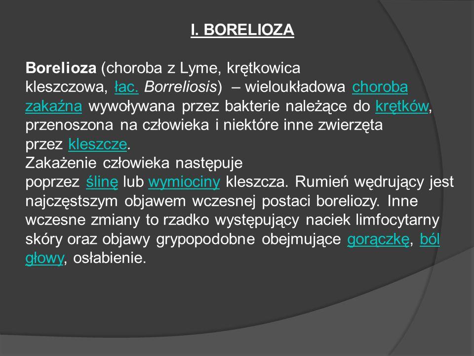I.BORELIOZA Borelioza (choroba z Lyme, krętkowica kleszczowa, łac.