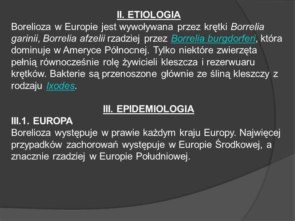 II. ETIOLOGIA Borelioza w Europie jest wywoływana przez krętki Borrelia garinii, Borrelia afzelii rzadziej przez Borrelia burgdorferi, która dominuje