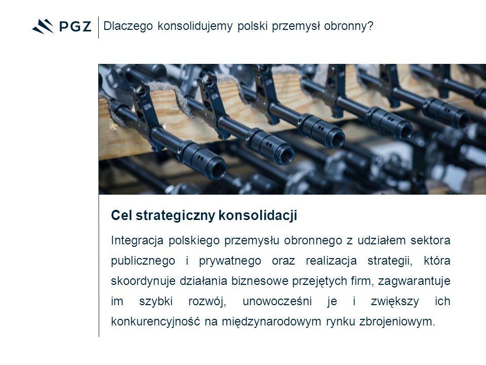 Integracja polskiego przemysłu obronnego z udziałem sektora publicznego i prywatnego oraz realizacja strategii, która skoordynuje działania biznesowe