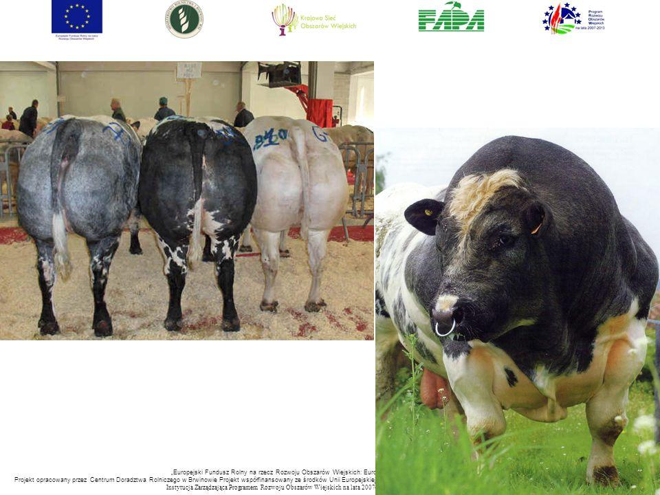 """""""Europejski Fundusz Rolny na rzecz Rozwoju Obszarów Wiejskich: Europa inwestująca w obszary wiejskie. Projekt opracowany przez Centrum Doradztwa Rolniczego w Brwinowie Projekt współfinansowany ze środków Unii Europejskiej w ramach Pomocy Technicznej Programu Rozwoju Obszarów Wiejskich na lata 2007-2013 Instytucja Zarządzająca Programem Rozwoju Obszar ó w Wiejskich na lata 2007-2013 -Minister Rolnictwa i Rozwoju Wsi"""