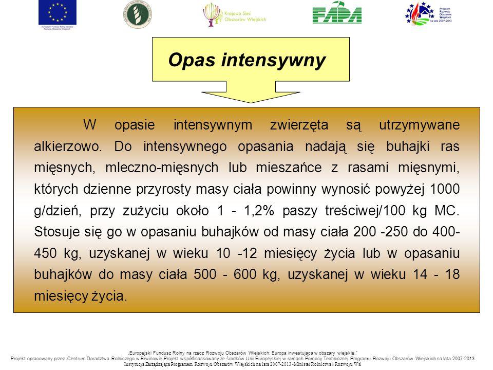 """""""Europejski Fundusz Rolny na rzecz Rozwoju Obszarów Wiejskich: Europa inwestująca w obszary wiejskie. Projekt opracowany przez Centrum Doradztwa Rolniczego w Brwinowie Projekt współfinansowany ze środków Unii Europejskiej w ramach Pomocy Technicznej Programu Rozwoju Obszarów Wiejskich na lata 2007-2013 Instytucja Zarządzająca Programem Rozwoju Obszar ó w Wiejskich na lata 2007-2013 -Minister Rolnictwa i Rozwoju Wsi W opasie intensywnym zwierzęta są utrzymywane alkierzowo."""