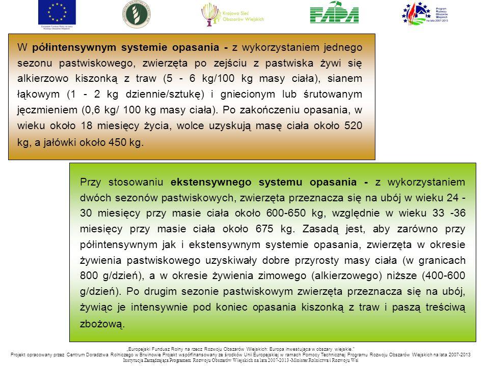 """""""Europejski Fundusz Rolny na rzecz Rozwoju Obszarów Wiejskich: Europa inwestująca w obszary wiejskie. Projekt opracowany przez Centrum Doradztwa Rolniczego w Brwinowie Projekt współfinansowany ze środków Unii Europejskiej w ramach Pomocy Technicznej Programu Rozwoju Obszarów Wiejskich na lata 2007-2013 Instytucja Zarządzająca Programem Rozwoju Obszar ó w Wiejskich na lata 2007-2013 -Minister Rolnictwa i Rozwoju Wsi Przy stosowaniu ekstensywnego systemu opasania - z wykorzystaniem dwóch sezonów pastwiskowych, zwierzęta przeznacza się na ubój w wieku 24 - 30 miesięcy przy masie ciała około 600-650 kg, względnie w wieku 33 -36 miesięcy przy masie ciała około 675 kg."""