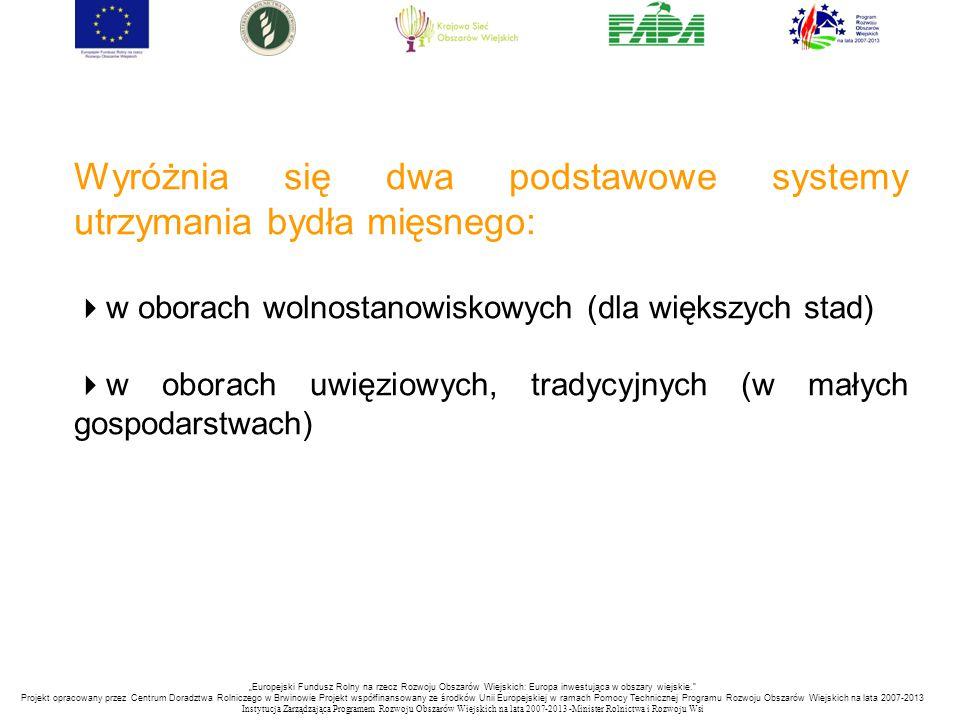 """""""Europejski Fundusz Rolny na rzecz Rozwoju Obszarów Wiejskich: Europa inwestująca w obszary wiejskie. Projekt opracowany przez Centrum Doradztwa Rolniczego w Brwinowie Projekt współfinansowany ze środków Unii Europejskiej w ramach Pomocy Technicznej Programu Rozwoju Obszarów Wiejskich na lata 2007-2013 Instytucja Zarządzająca Programem Rozwoju Obszar ó w Wiejskich na lata 2007-2013 -Minister Rolnictwa i Rozwoju Wsi Wyróżnia się dwa podstawowe systemy utrzymania bydła mięsnego:  w oborach wolnostanowiskowych (dla większych stad)  w oborach uwięziowych, tradycyjnych (w małych gospodarstwach)"""