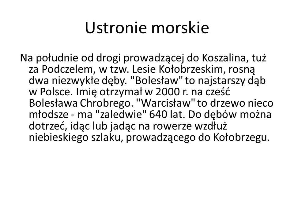 Ustronie morskie Na południe od drogi prowadzącej do Koszalina, tuż za Podczelem, w tzw.