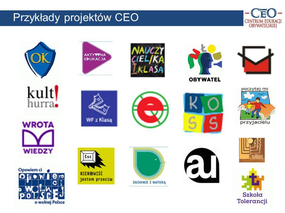 11 Przykłady projektów CEO
