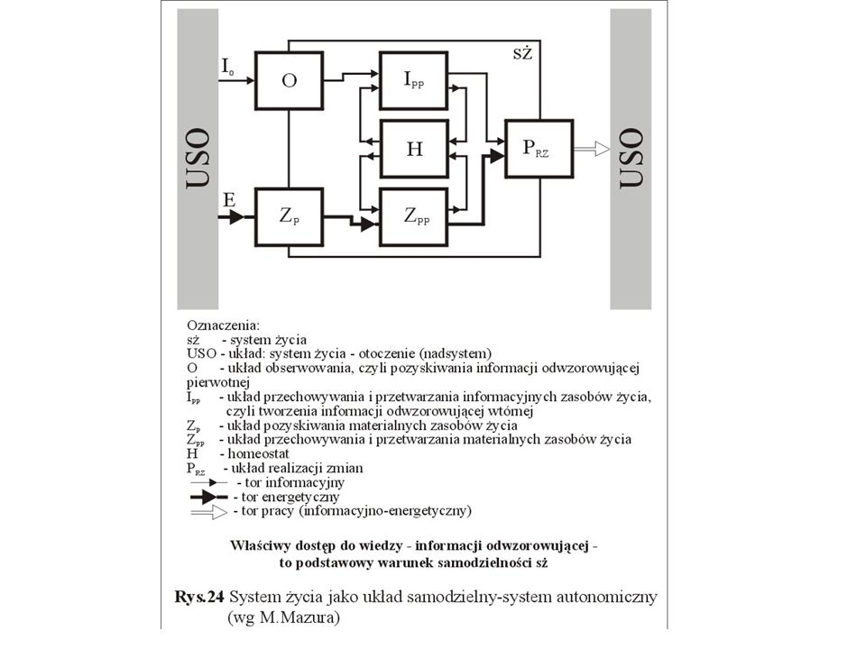 System autonomiczny (M.