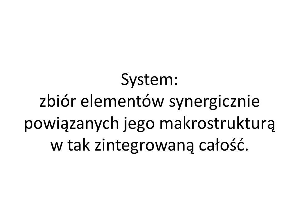 W analizie systemowej niezbędność precyzyjnego języka