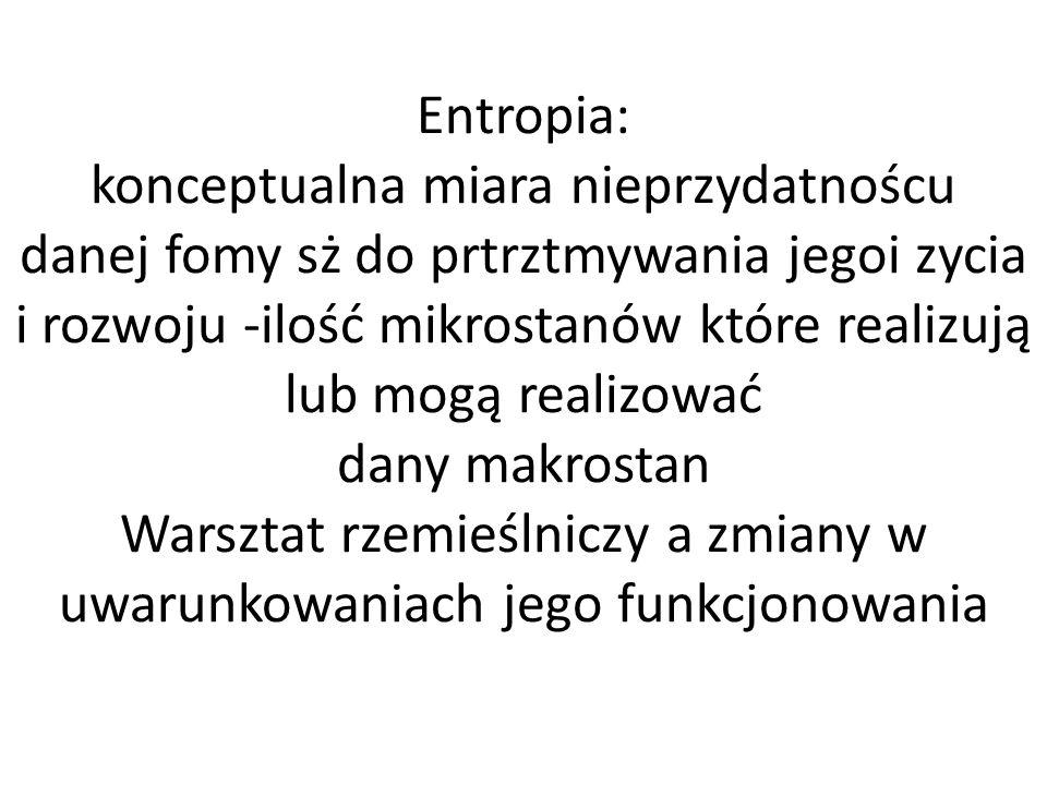 Entropia: konceptualna miara nieprzydatnoścu danej fomy sż do prtrztmywania jegoi zycia i rozwoju -ilość mikrostanów które realizują lub mogą realizować dany makrostan Warsztat rzemieślniczy a zmiany w uwarunkowaniach jego funkcjonowania