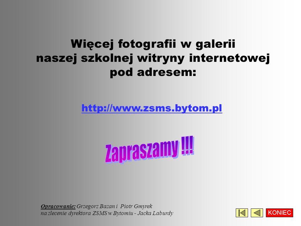 Więcej fotografii w galerii naszej szkolnej witryny internetowej pod adresem: Opracowanie: Grzegorz Bazan i Piotr Gmyrek na zlecenie dyrektora ZSMS w