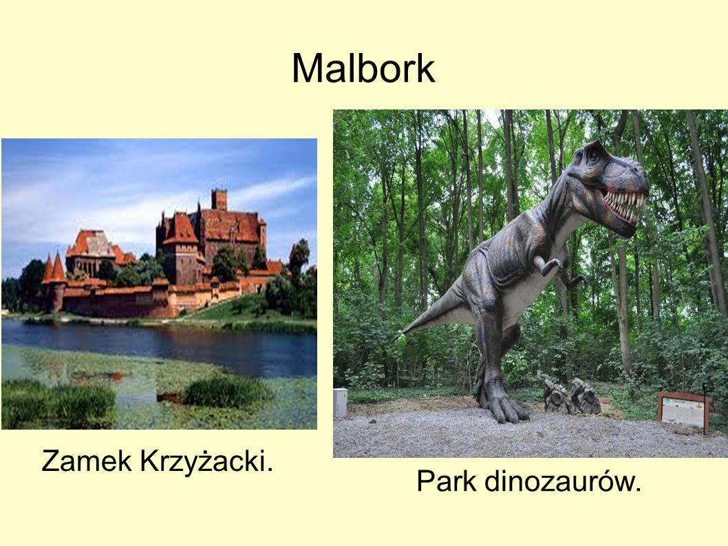 Malbork Zamek Krzyżacki. Park dinozaurów.