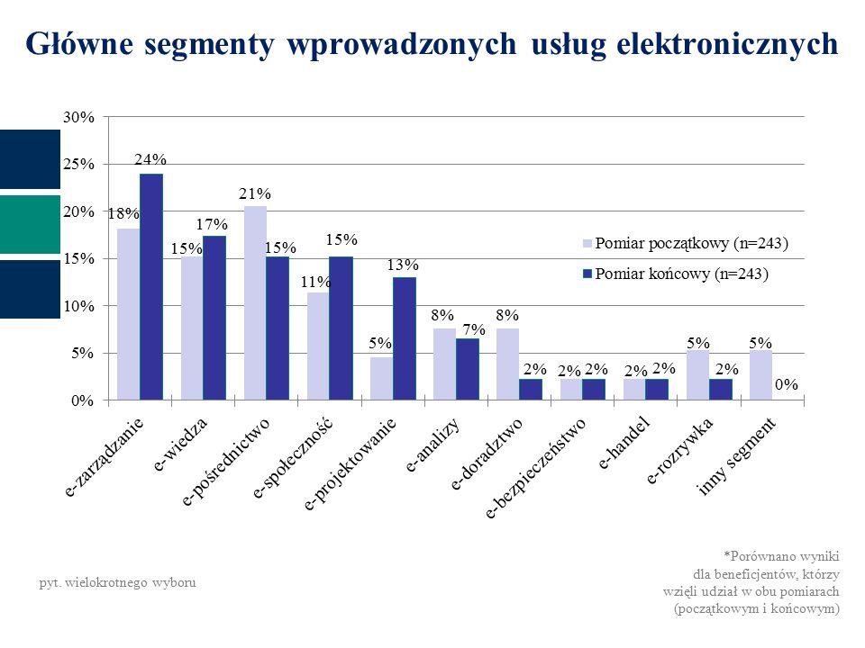 Główne segmenty wprowadzonych usług elektronicznych pyt.