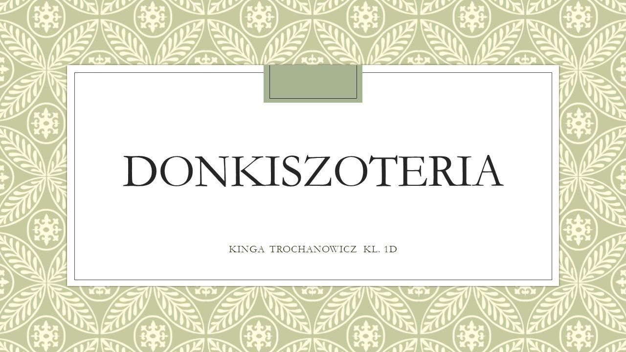 DONKISZOTERIA KINGA TROCHANOWICZ KL. 1D