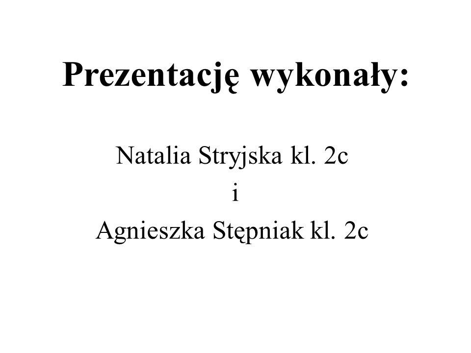 Prezentację wykonały: Natalia Stryjska kl. 2c i Agnieszka Stępniak kl. 2c