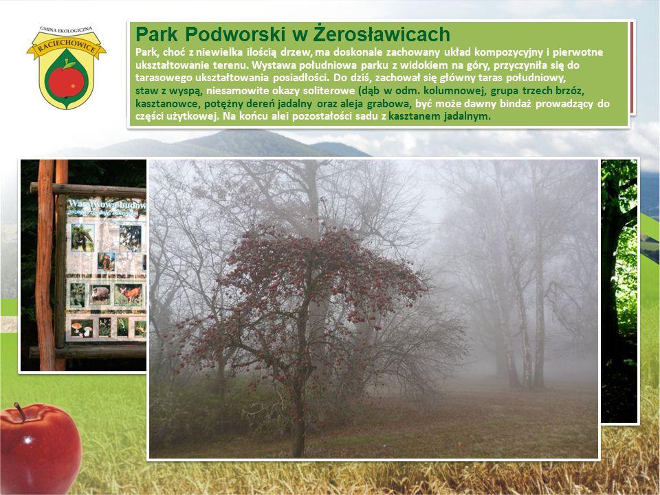 """Ścieżka edukacyjna """"Czasławiec"""" przebiegająca w całości przez kompleks leśny w rejonie Czasławia (Gm. Raciechowice), ma długość około 1,5 km i tworzy"""