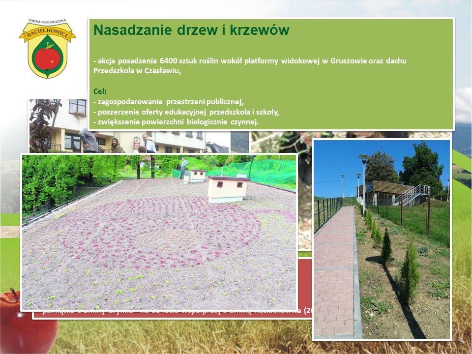 Dla Ziemi - dla ducha: w kwietniu w związku z obchodami Dnia Ziemi uczniowie Szkoły Podstawowej w Raciechowicach wzięli udział w nasadzaniu 500 drzewe