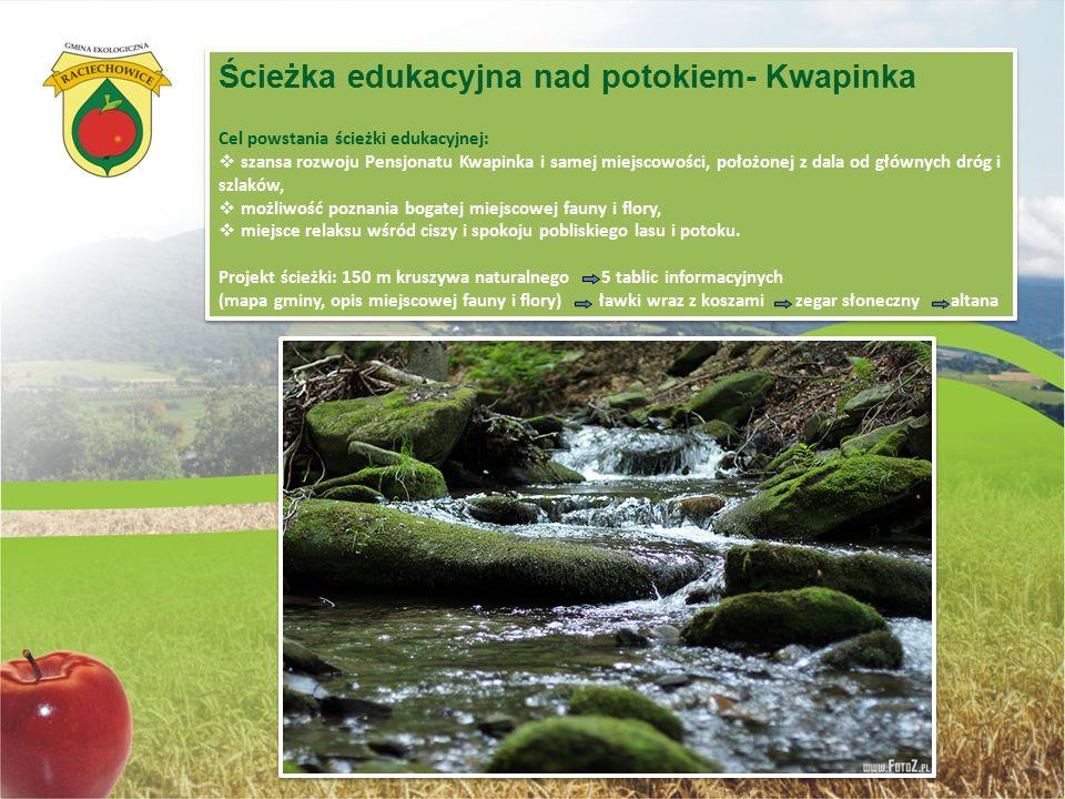 Ścieżka edukacyjna nad potokiem- Kwapinka Cel powstania ścieżki edukacyjnej:  szansa rozwoju Pensjonatu Kwapinka i samej miejscowości, położonej z da