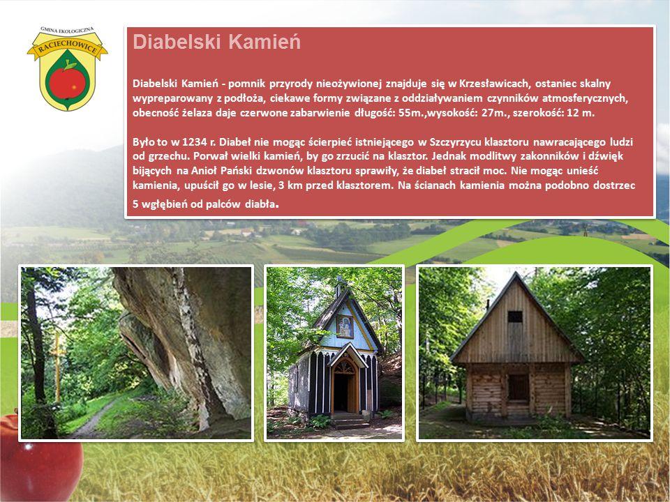 Diabelski Kamień Diabelski Kamień - pomnik przyrody nieożywionej znajduje się w Krzesławicach, ostaniec skalny wypreparowany z podłoża, ciekawe formy
