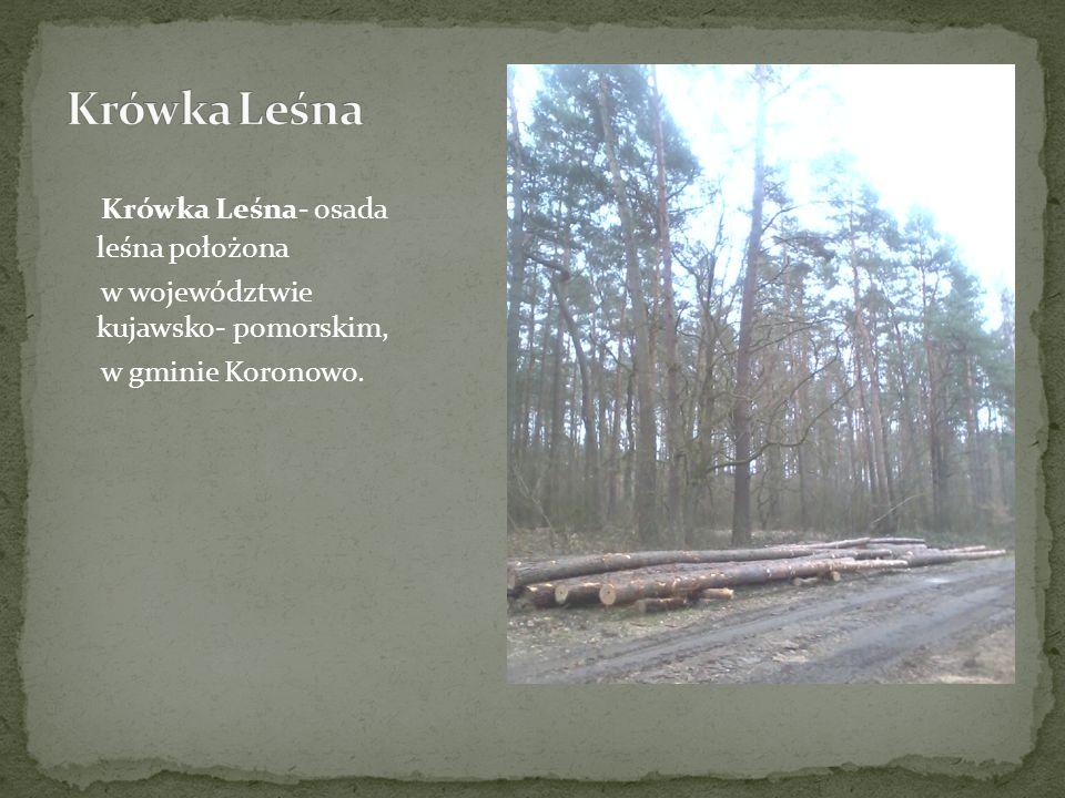Krówka Leśna- osada leśna położona w województwie kujawsko- pomorskim, w gminie Koronowo.