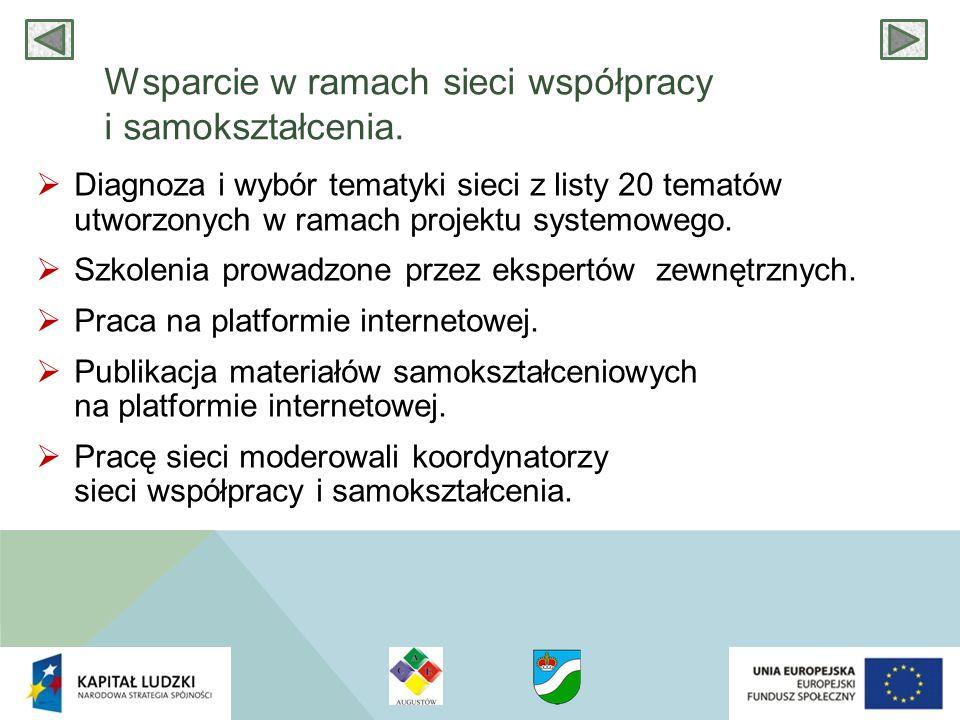 Wsparcie w ramach sieci współpracy i samokształcenia.  Diagnoza i wybór tematyki sieci z listy 20 tematów utworzonych w ramach projektu systemowego.