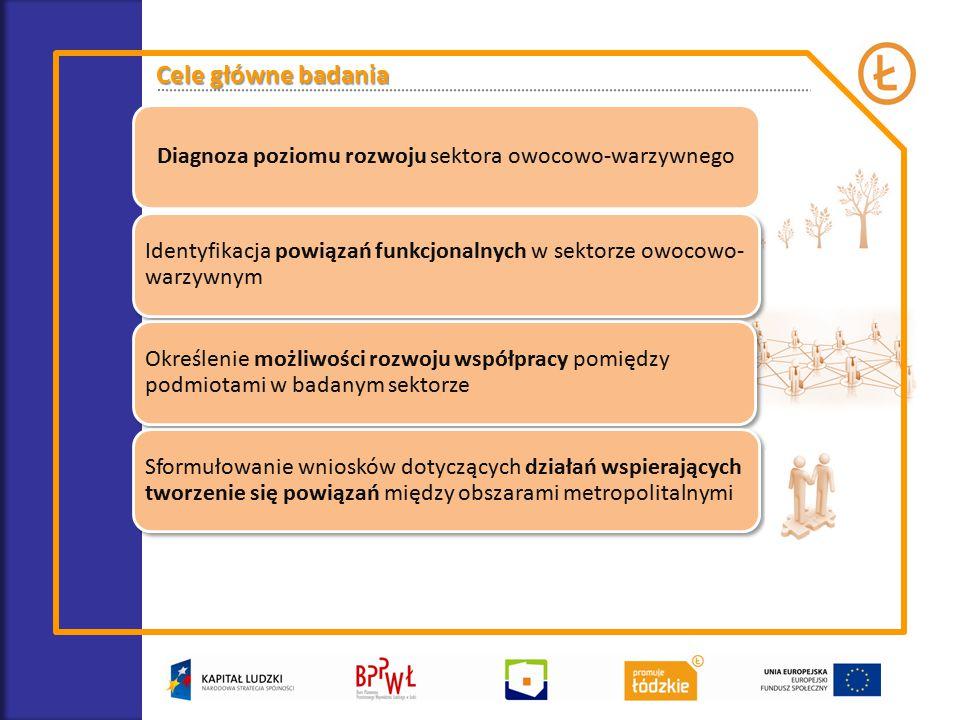 Cele główne badania Diagnoza poziomu rozwoju sektora owocowo-warzywnego Identyfikacja powiązań funkcjonalnych w sektorze owocowo- warzywnym Określenie