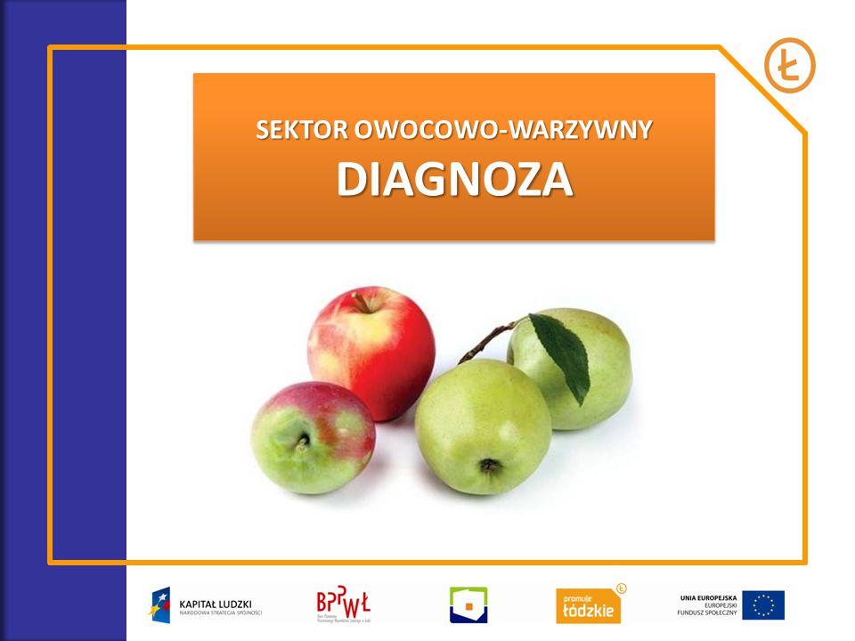 SEKTOR OWOCOWO-WARZYWNY DIAGNOZA DIAGNOZA