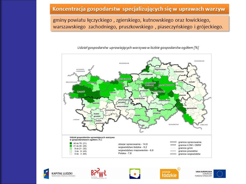 Koncentracja gospodarstw specjalizujących się w uprawach warzyw gminy powiatu łęczyckiego, zgierskiego, kutnowskiego oraz łowickiego, warszawskiego za