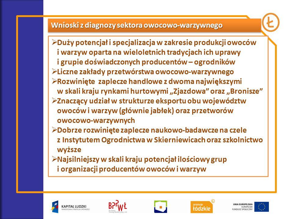 Wnioski z diagnozy sektora owocowo-warzywnego  Duży potencjał i specjalizacja w zakresie produkcji owoców i warzyw oparta na wieloletnich tradycjach