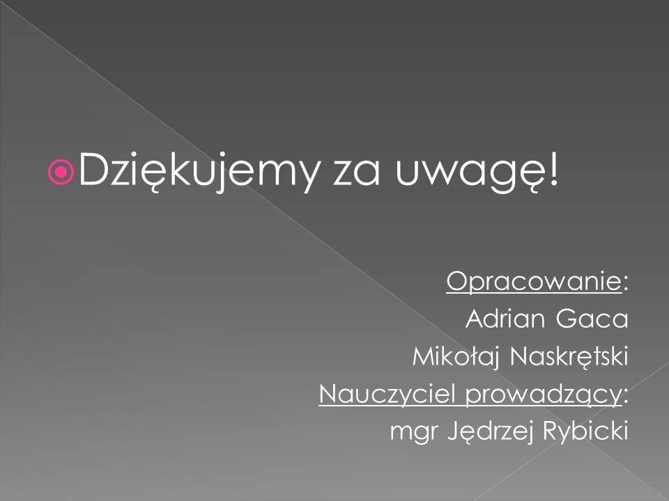  Dziękujemy za uwagę! Opracowanie: Adrian Gaca Mikołaj Naskrętski Nauczyciel prowadzący: mgr Jędrzej Rybicki