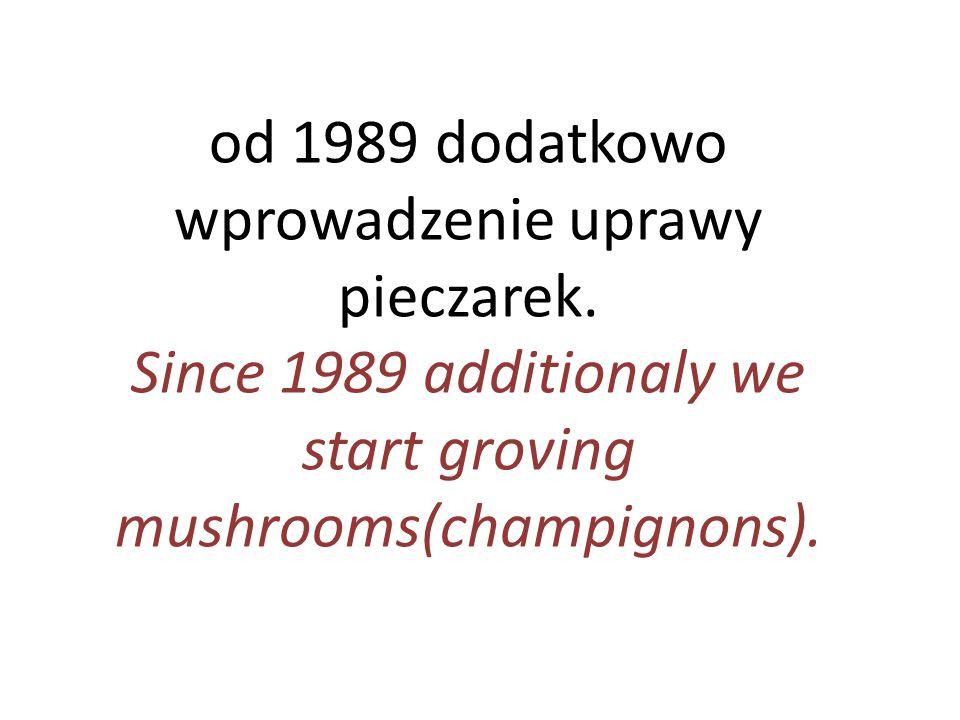 od 1989 dodatkowo wprowadzenie uprawy pieczarek. Since 1989 additionaly we start groving mushrooms(champignons).