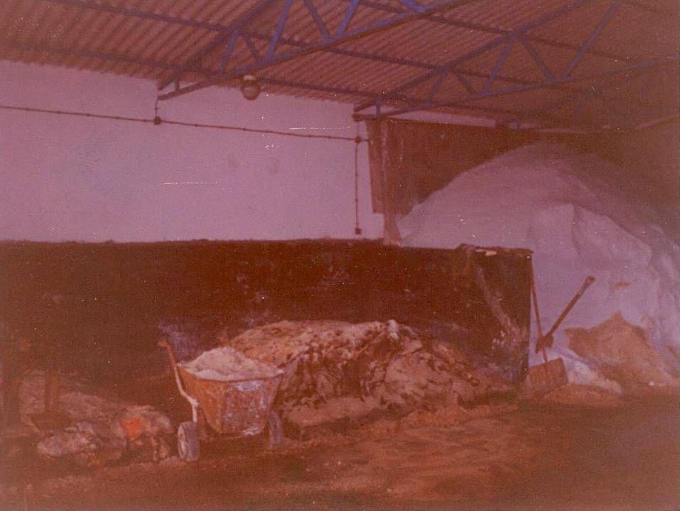 1991 produkcja palet. Since 1991 we start pallet production.