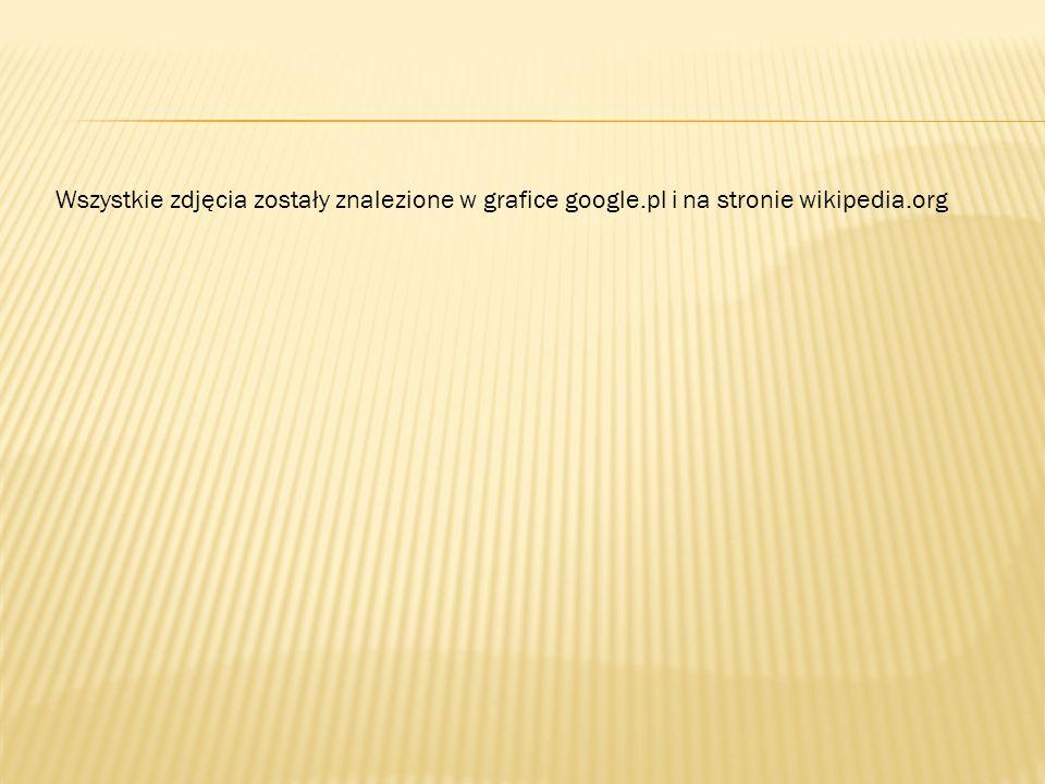 Wszystkie zdjęcia zostały znalezione w grafice google.pl i na stronie wikipedia.org