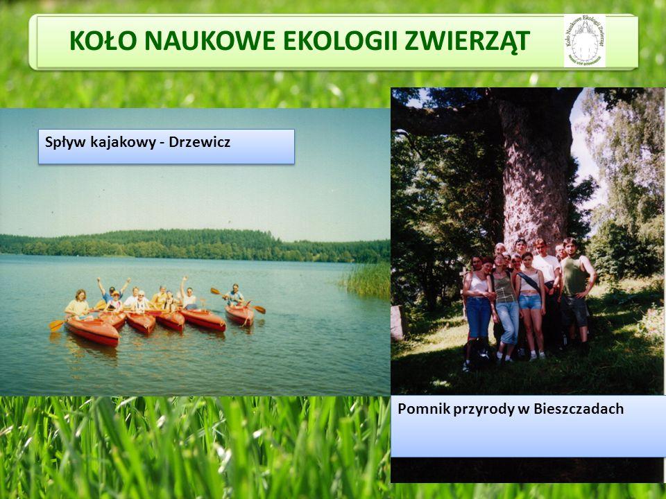 KOŁO NAUKOWE EKOLOGII ZWIERZĄT Spływ kajakowy - Drzewicz Pomnik przyrody w Bieszczadach