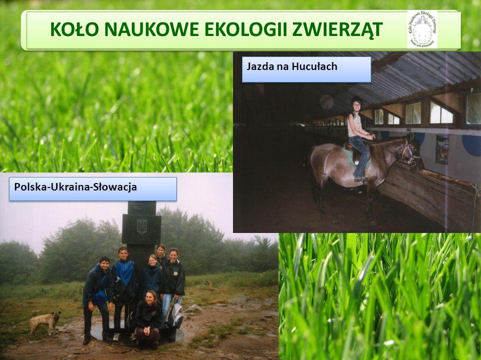 KOŁO NAUKOWE EKOLOGII ZWIERZĄT Polska-Ukraina-Słowacja Jazda na Hucułach