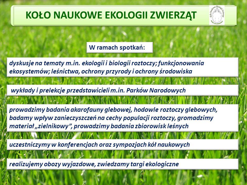 KOŁO NAUKOWE EKOLOGII ZWIERZĄT W ramach spotkań: dyskusje na tematy m.in. ekologii i biologii roztoczy; funkcjonowania ekosystemów; leśnictwa, ochrony