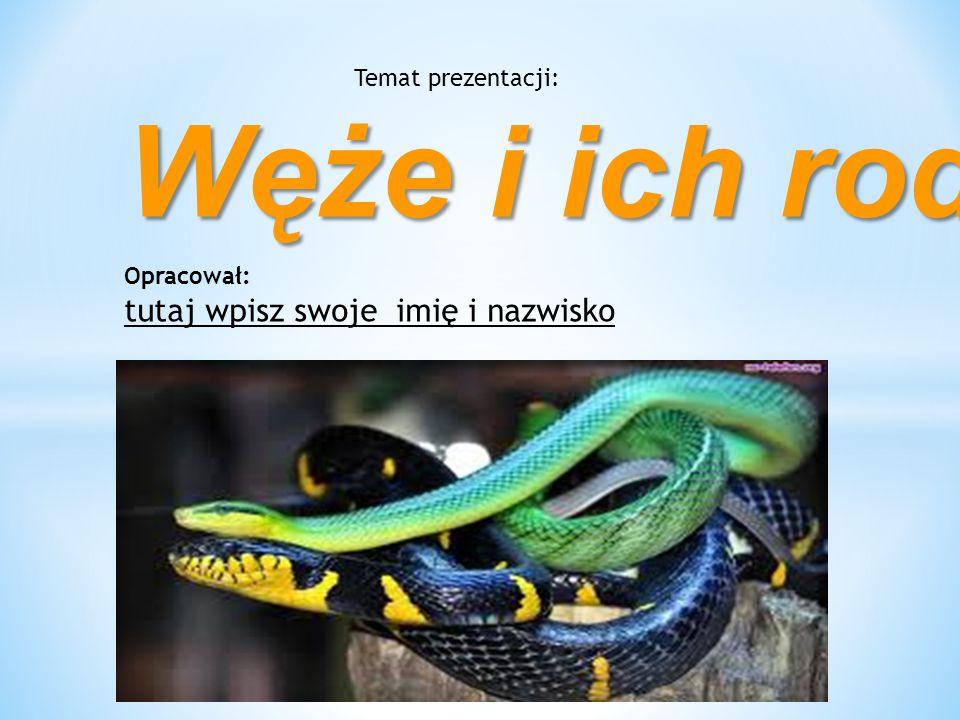 Temat prezentacji: Węże i ich rodzaje Opracował: tutaj wpisz swoje imię i nazwisko
